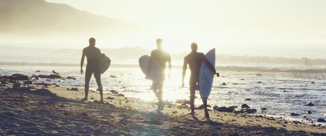 silhouettes of surfers at the beach